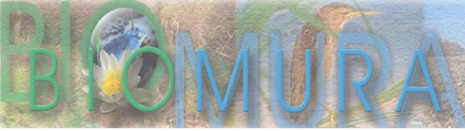 Biomura